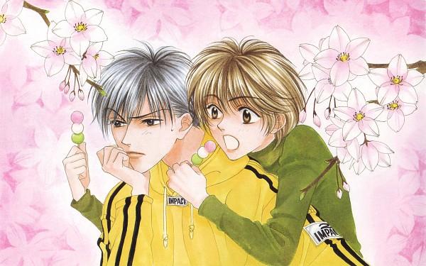 Hana-Kimi-hana-kimi-manga-30701470-600-375
